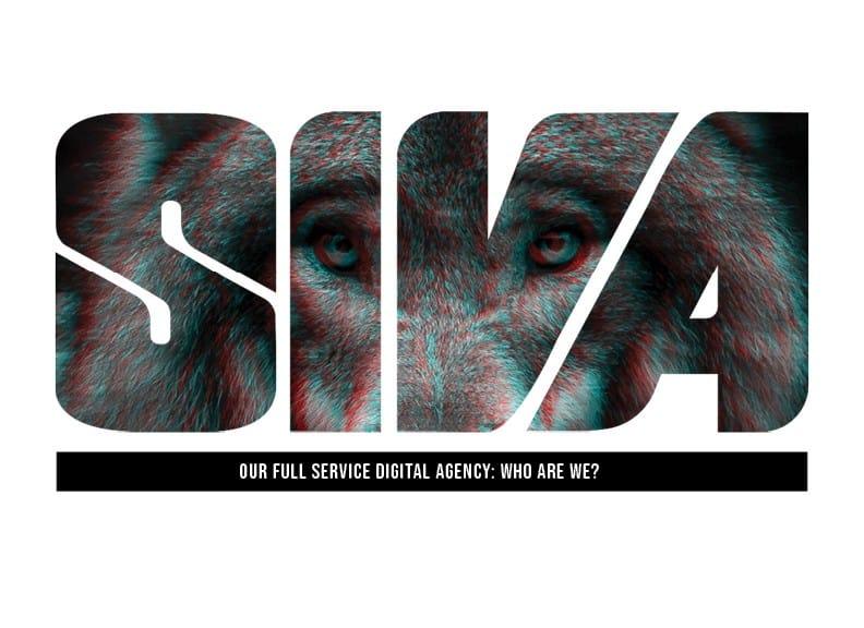 Our digital agency